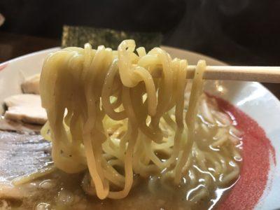 橿原にある麺やしりとりの中華そばの麺アップ